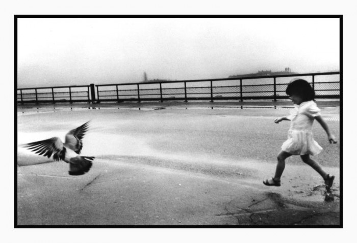 Trying Their Wings, 1984 © Flo Fox