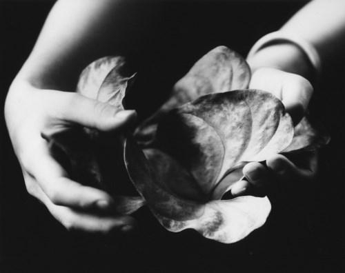 Walter Chappell, The Offering, 1978 © The Estate of Walter Chappell
