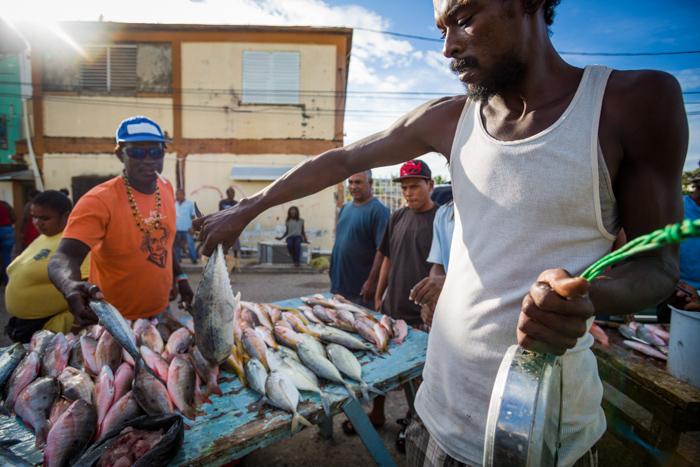 Fish Market. Belize City, Belize