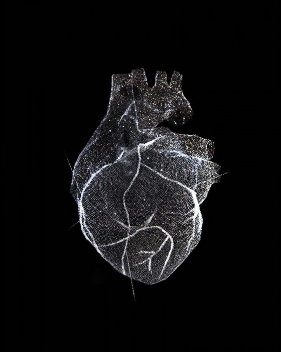 Glass Model of a Heart, 2012