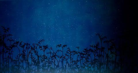 Susan Derges: Star Field – Bracken, 2008