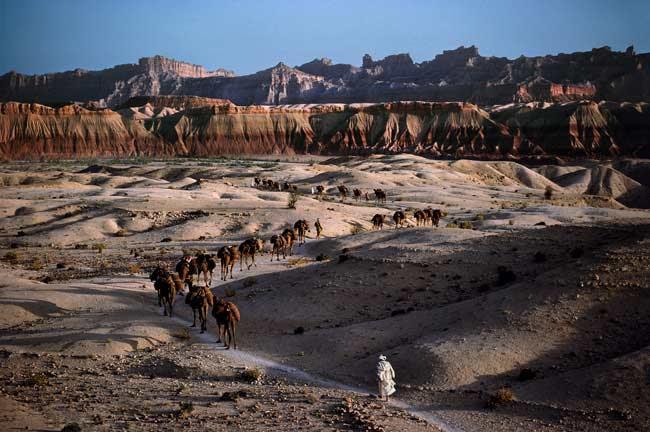 """© Steve McCurry,""""Camel Caravan"""", Afghanistan 1981"""
